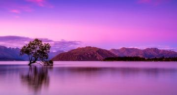 Op reis naar Nieuw-Zeeland